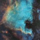 North America NGC7000,                                Sharky