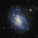 """NGC 300,                                Sebastian """"BastiH..."""