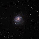 M101,                                Tomasz Slomczynski