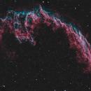 NGC 6992, The Bat Nebula,                                Lucas Maguire