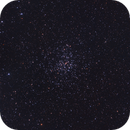 M37 Open Cluster,                                Gebhard Maurer