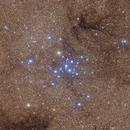 Ptolemy Cluster,                                Nikita Misiura