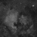 NGC 7000,                                José Carlos Diniz