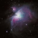 M42,                                Michael Blaylock