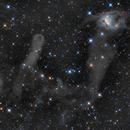 NGC 1788 _ The Foxface Nebula,                                Antonio F. Sánchez