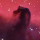 Horsehead Nebula,                                Rathi Banerjee