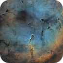 IC 1396 - Elephant Trunk Nebula,                                Monkeybird747