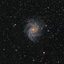 NGC 6946 Fireworks Galaxy,                                Xavier V