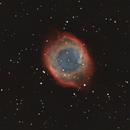 NGC 7293,                                Patrice RENAUT