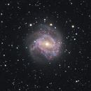 M 83 - Southern Pinwheel Galaxy,                                Adrian Freemantle