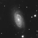 NGC 5981 5982 and 5985,                                SamAndrew