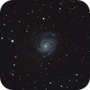 M101 The Pinwheel Galaxy,                                Lucas Maguire