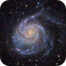 The Pinwheel Galaxy - Messier 101,                                Connor Matherne