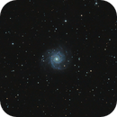 Messier 74,                                Marcus Jungwirth