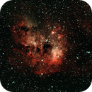 IC410 - Nebulosa girini,                                Stefano Lorenzoni