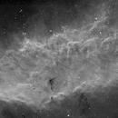 The California Nebula (NGC 1499),                                Andre van Zegveld