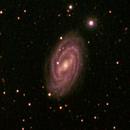 M 109,                                David Redwine