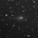 Comet C/2019 Y4  (Atlas),                                alphaastro (Rüdiger)