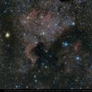 North America Nebula and Pelican Nebula 135mm,                                Michael Feigenbaum