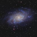M33 Triangulum Galaxy,                                Robert Browning