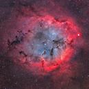 IC1396,                                Michael Deger