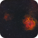 NGC 2237 - Rosette Widefield - HSO,                                Kyle Pickett