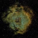 NGC 2244 Rosette Nebula in narrowband SHO,                                Graham Roberts