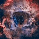 NGC 2237 The Rosette Nebula HOO 4-panel Mosaic,                                Mark Carter