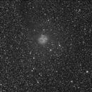 IC5146 - Cocoon Nebula,                                Scott Busby