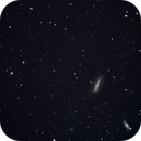 Grus Quartet (NGC 7552,7582,7590,7599),                                glend