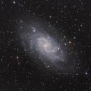 Messier 33,                                Hartmuth Kintzel