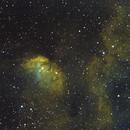 SH2-101  -  The Tulip Nebula,                                AstroGeek