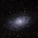 Galaxie du Triangle  M33,                                Roger Bertuli