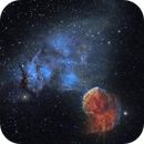 IC 443 Jelly Fish Nebula,                                Muhammad Ali