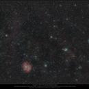 Rosetta widefield with fairy-like stars,                                Dominique Callant