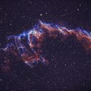 Cirrus Nebula NGC 6995,                                Thomas Hellwing