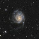 M101 Pinwheel Galaxy,                                Erlend Langsrud