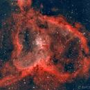 Heart Nebula,                                Ralf
