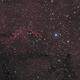 """IC_1396 the """"Elephant's Trunk"""" nebula,                                OrionRider"""
