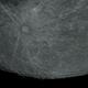Bottom of the Moon,                                Scotty Bishop