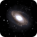 Bodes Galaxy M81,                                Mike