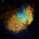 Tulip Nebula,                                dts350z