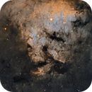 Sharpless2-171 in SHO,                                Rob Parsons
