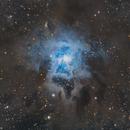 Iris Nebula,                                Guillermo Gonzalez
