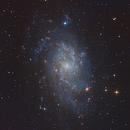 M33, Triangulum Galaxy,                                Kathy Walker