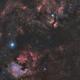 Autumn songs of Cygnus --------- mosaic 3*5,                                WildDuck