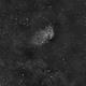 Tulip Nebula in Ha,                                NewfieStargazer