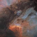 Pelican nebula and surroundings,                                Erik Pirtala