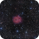 IC 5146 Cocoon nebula in HaLRGB on Lacerta 250 and ASI 1600,                                Piet Vanneste