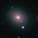 NGC 488,                                Frank Colosimo
